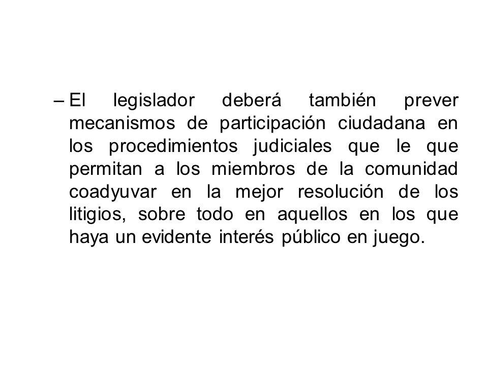 El legislador deberá también prever mecanismos de participación ciudadana en los procedimientos judiciales que le que permitan a los miembros de la comunidad coadyuvar en la mejor resolución de los litigios, sobre todo en aquellos en los que haya un evidente interés público en juego.