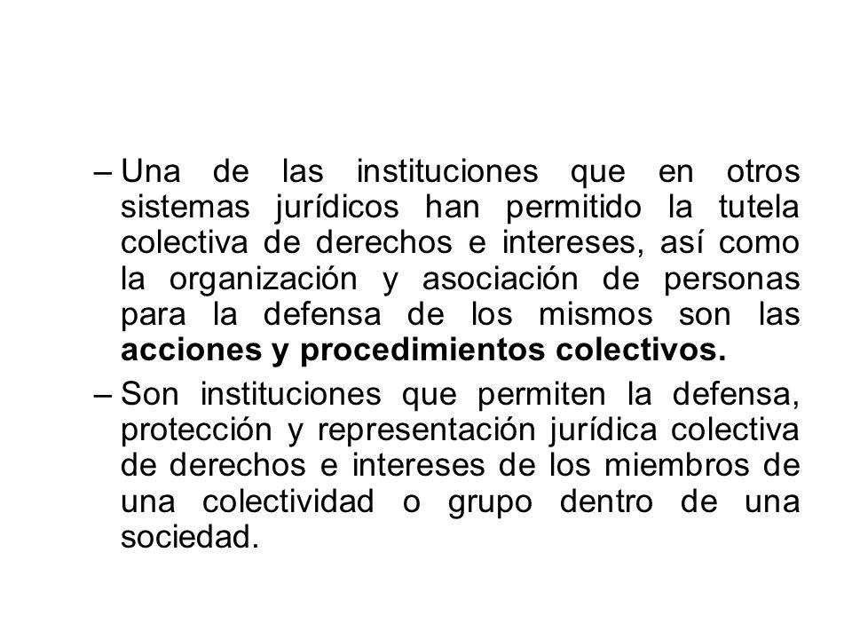 Una de las instituciones que en otros sistemas jurídicos han permitido la tutela colectiva de derechos e intereses, así como la organización y asociación de personas para la defensa de los mismos son las acciones y procedimientos colectivos.