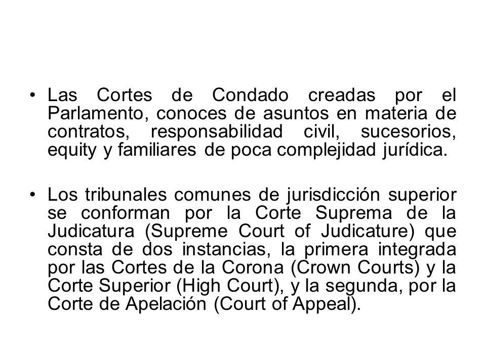 Las Cortes de Condado creadas por el Parlamento, conoces de asuntos en materia de contratos, responsabilidad civil, sucesorios, equity y familiares de poca complejidad jurídica.