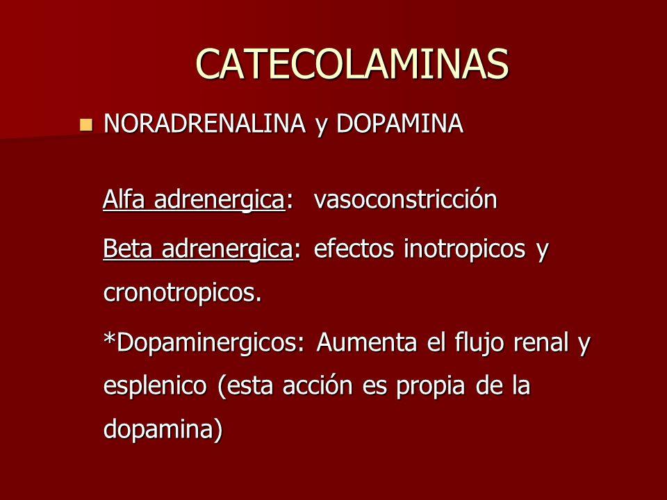CATECOLAMINAS NORADRENALINA y DOPAMINA