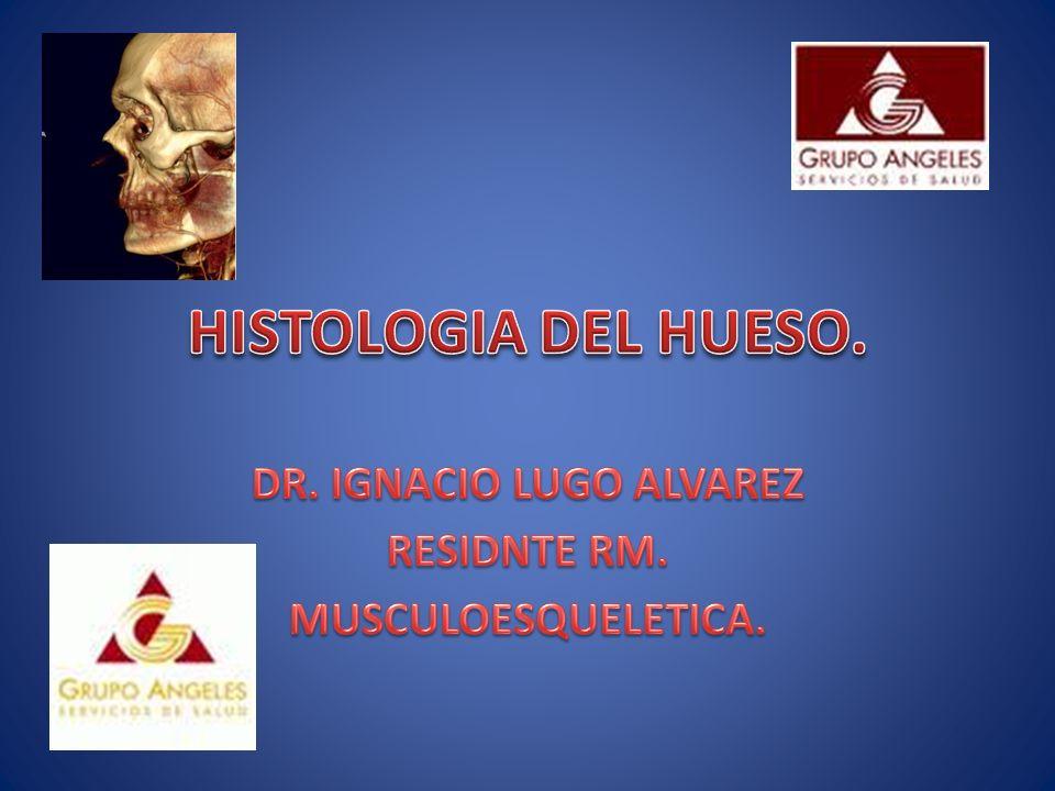 DR. IGNACIO LUGO ALVAREZ RESIDNTE RM. MUSCULOESQUELETICA.