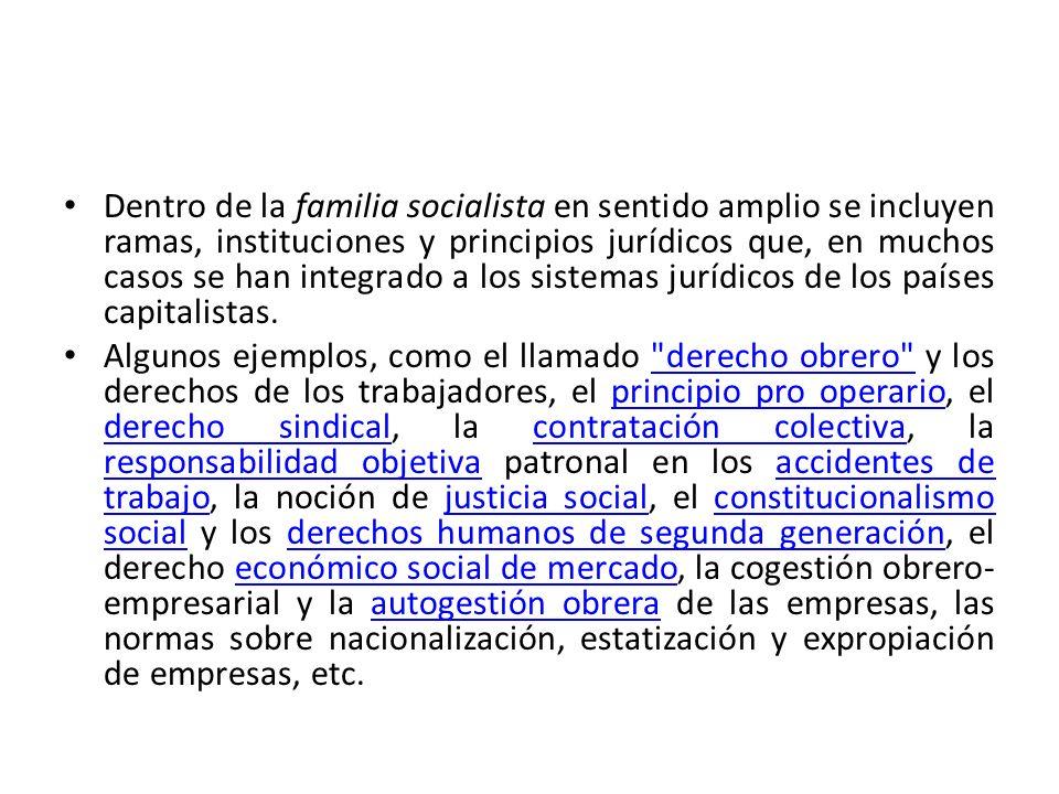 Dentro de la familia socialista en sentido amplio se incluyen ramas, instituciones y principios jurídicos que, en muchos casos se han integrado a los sistemas jurídicos de los países capitalistas.