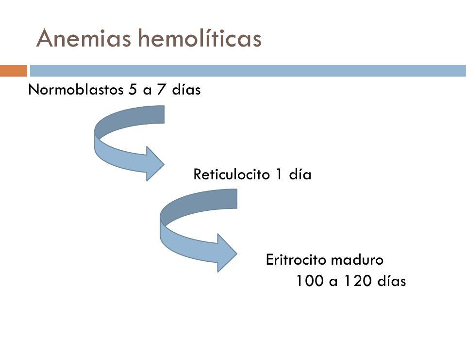 Anemias hemolíticas Normoblastos 5 a 7 días Reticulocito 1 día