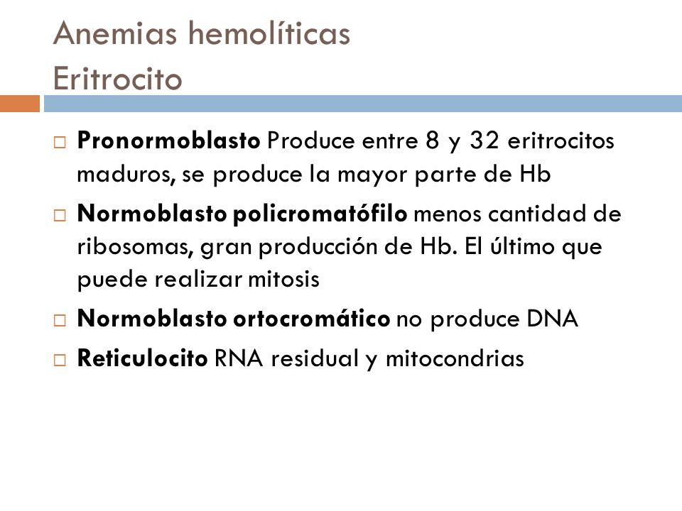 Anemias hemolíticas Eritrocito