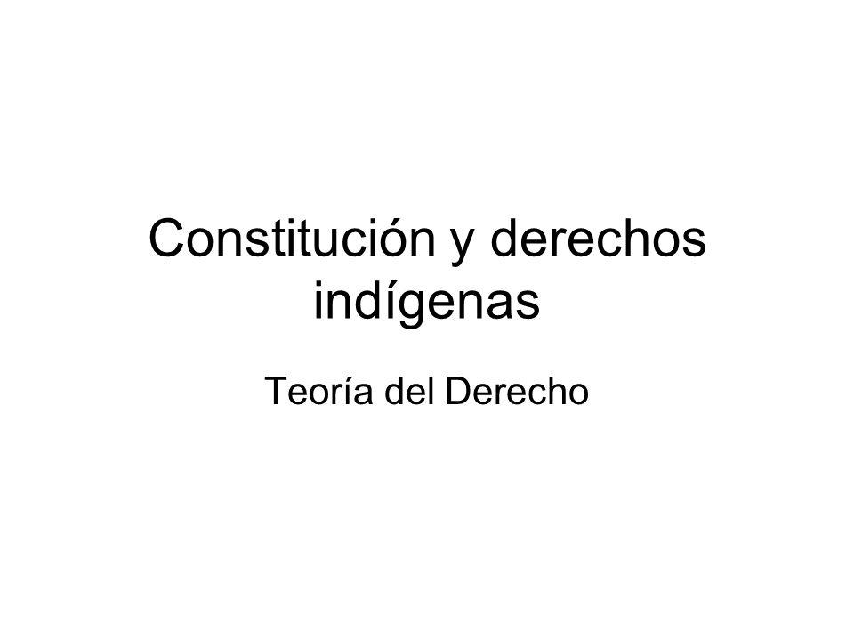 Constitución y derechos indígenas