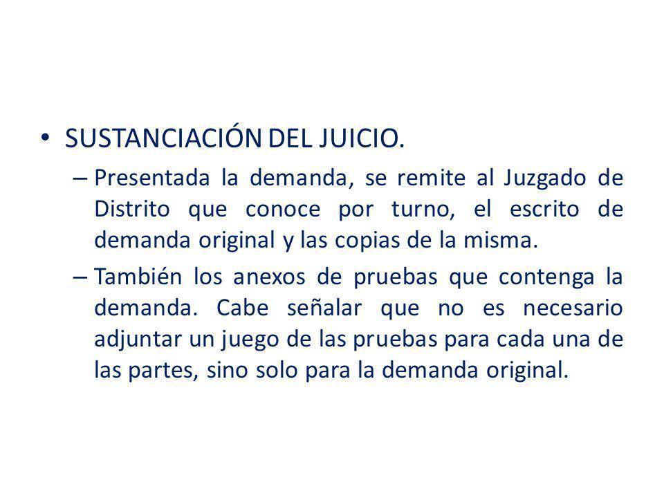 SUSTANCIACIÓN DEL JUICIO.