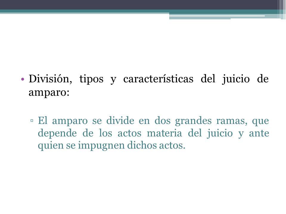 División, tipos y características del juicio de amparo: