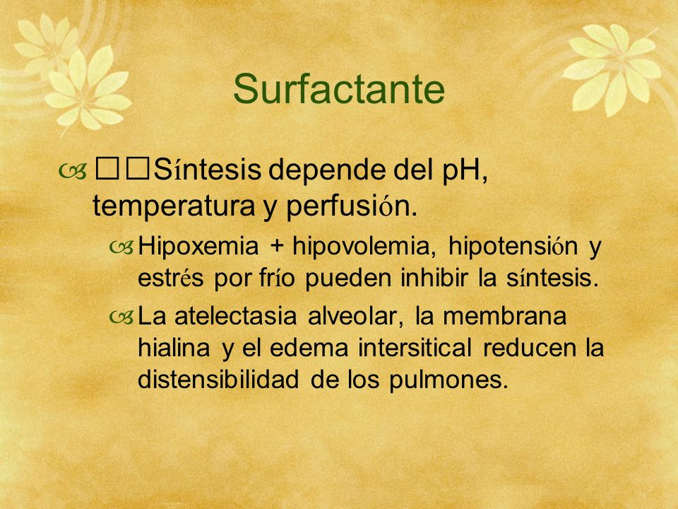 Surfactante Síntesis depende del pH, temperatura y perfusión.