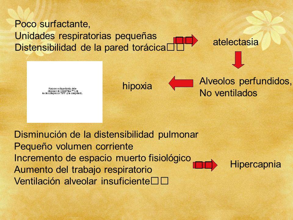 Poco surfactante,Unidades respiratorias pequeñas. Distensibilidad de la pared torácica  atelectasia.