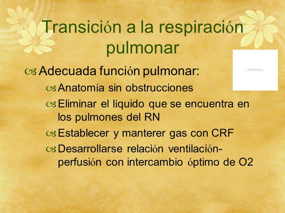 Transición a la respiración pulmonar