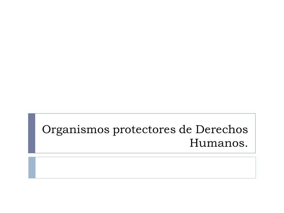 Organismos protectores de Derechos Humanos.