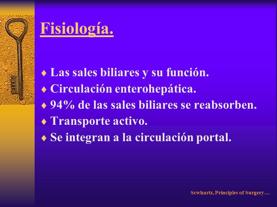 Fisiología. Las sales biliares y su función.