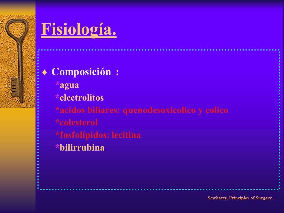 Fisiología. Composición : *agua *electrolitos