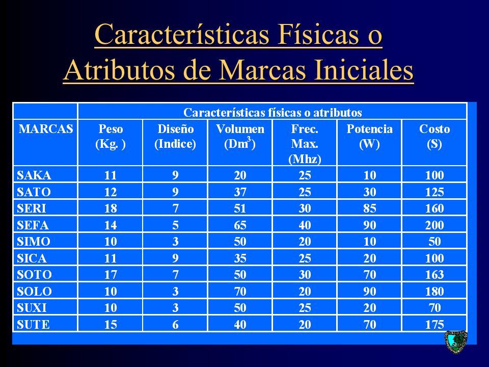 Características Físicas o Atributos de Marcas Iniciales