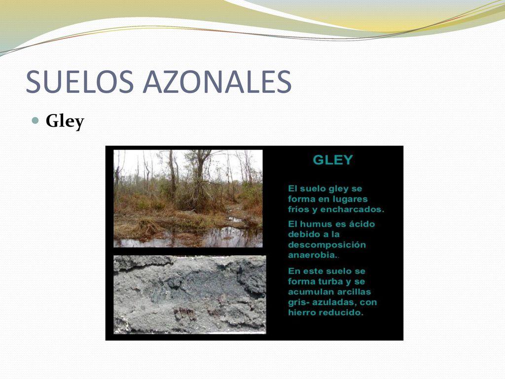 Bioblogestrella for Materiales que forman el suelo