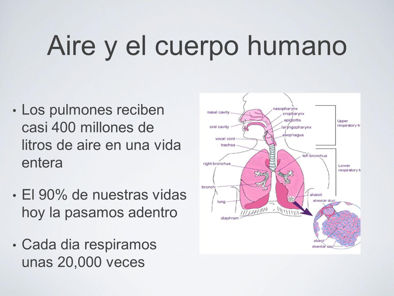 Aire y el cuerpo humano Los pulmones reciben casi 400 millones de litros de aire en una vida entera.