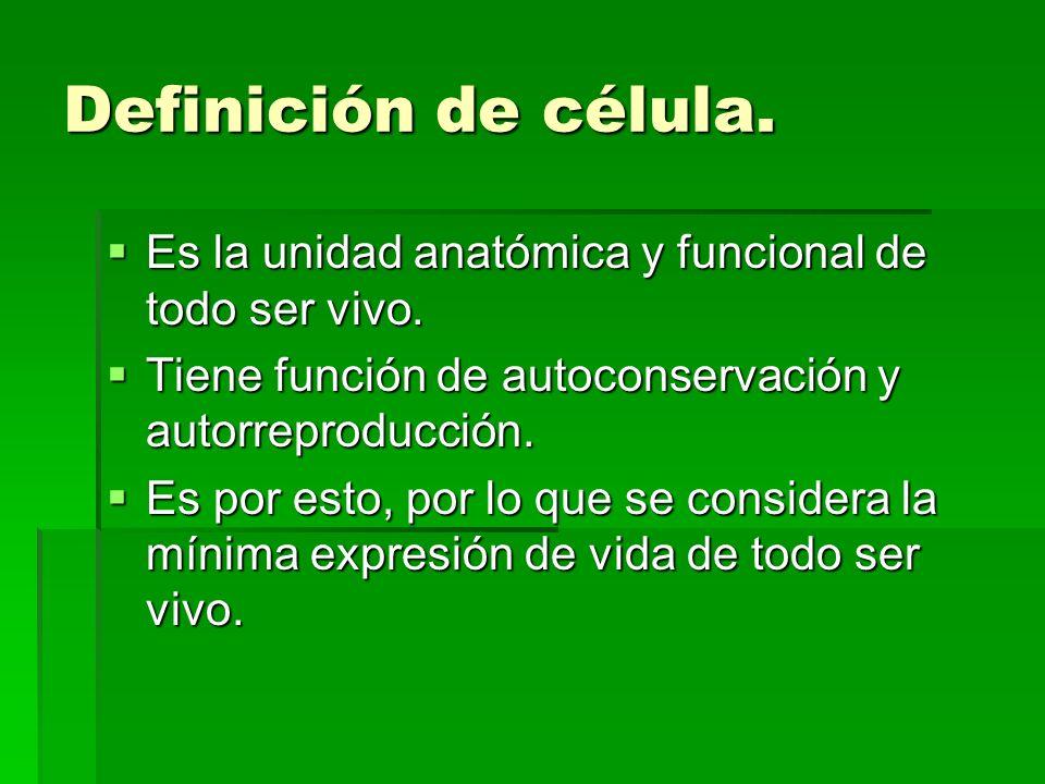 Definición de célula. Es la unidad anatómica y funcional de todo ser vivo. Tiene función de autoconservación y autorreproducción.