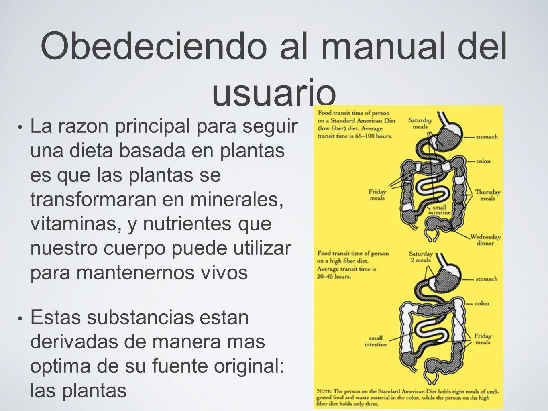 Obedeciendo al manual del usuario