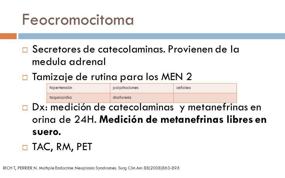 Feocromocitoma Secretores de catecolaminas. Provienen de la medula adrenal. Tamizaje de rutina para los MEN 2.