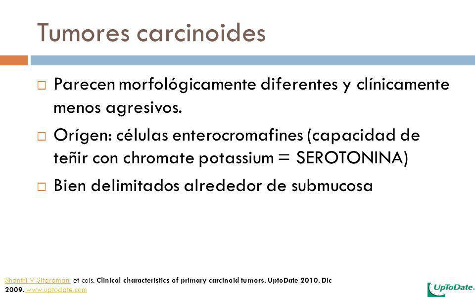 Tumores carcinoides Parecen morfológicamente diferentes y clínicamente menos agresivos.