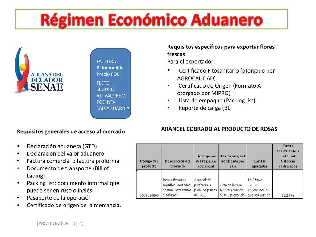 Dedepartamento De Ciencias Economicas Administrativas Y De  # Certificado Fitosanitario Muebles