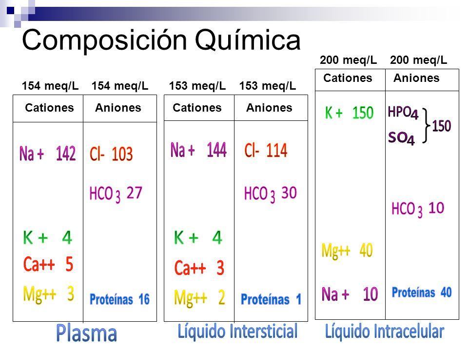 Composición Química K + 150 HPO 4 150 so 4 Na + 144 Na + 142 HCO HCO