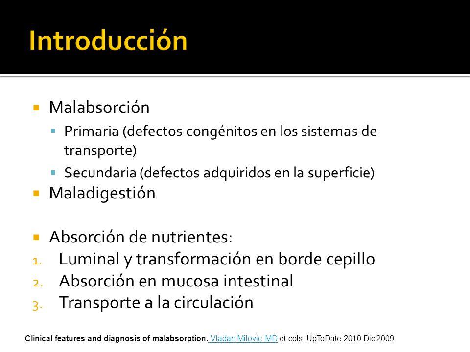 Introducción Malabsorción Maladigestión Absorción de nutrientes:
