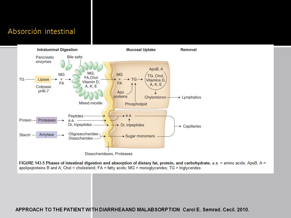 Absorción intestinalAPPROACH TO THE PATIENT WITH DIARRHEA AND MALABSORPTION.