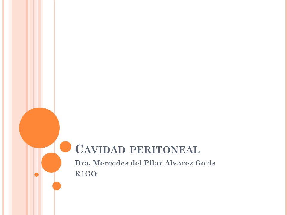 Dra. Mercedes del Pilar Alvarez Goris R1GO