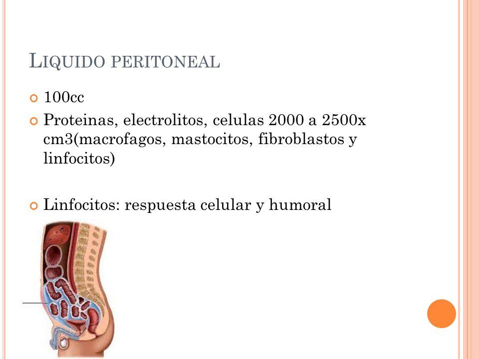 Liquido peritoneal 100cc. Proteinas, electrolitos, celulas 2000 a 2500x cm3(macrofagos, mastocitos, fibroblastos y linfocitos)