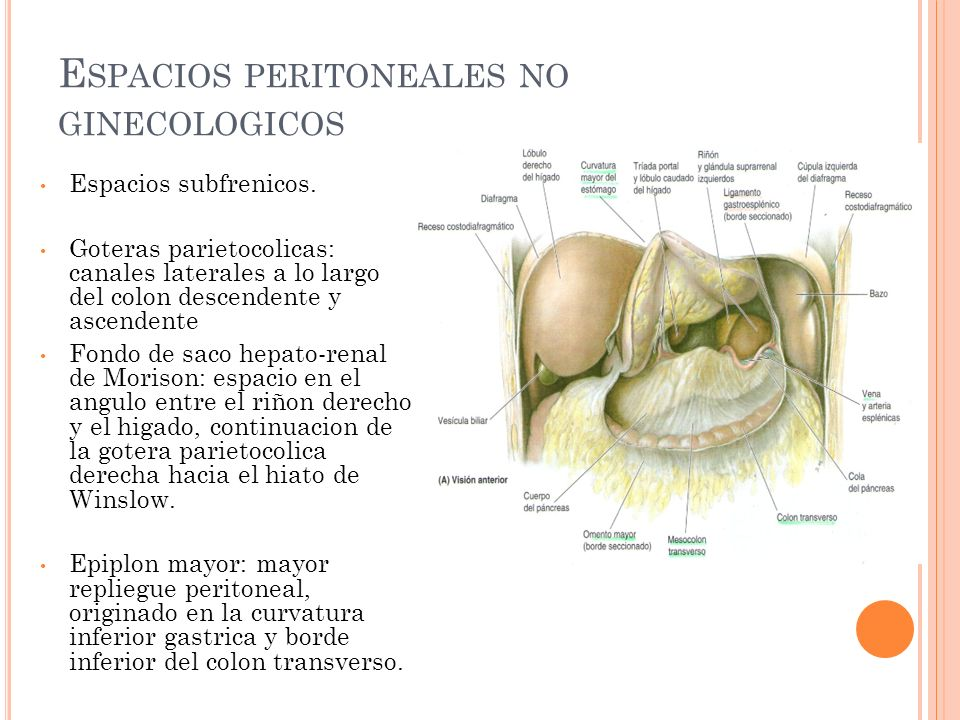 Espacios peritoneales no ginecologicos