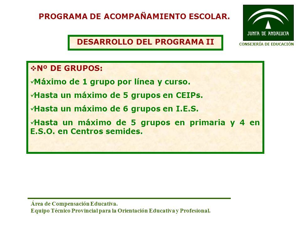 PROGRAMA DE ACOMPAÑAMIENTO ESCOLAR. DESARROLLO DEL PROGRAMA II