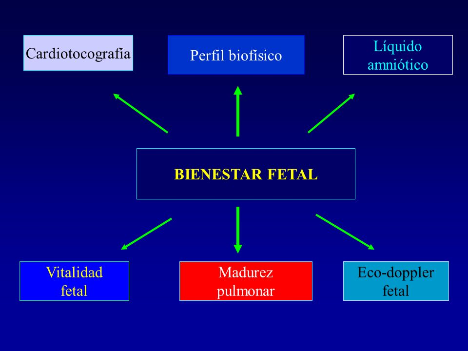 CardiotocografíaPerfil biofísico. Líquido. amniótico. BIENESTAR FETAL. Vitalidad. fetal. Madurez. pulmonar.