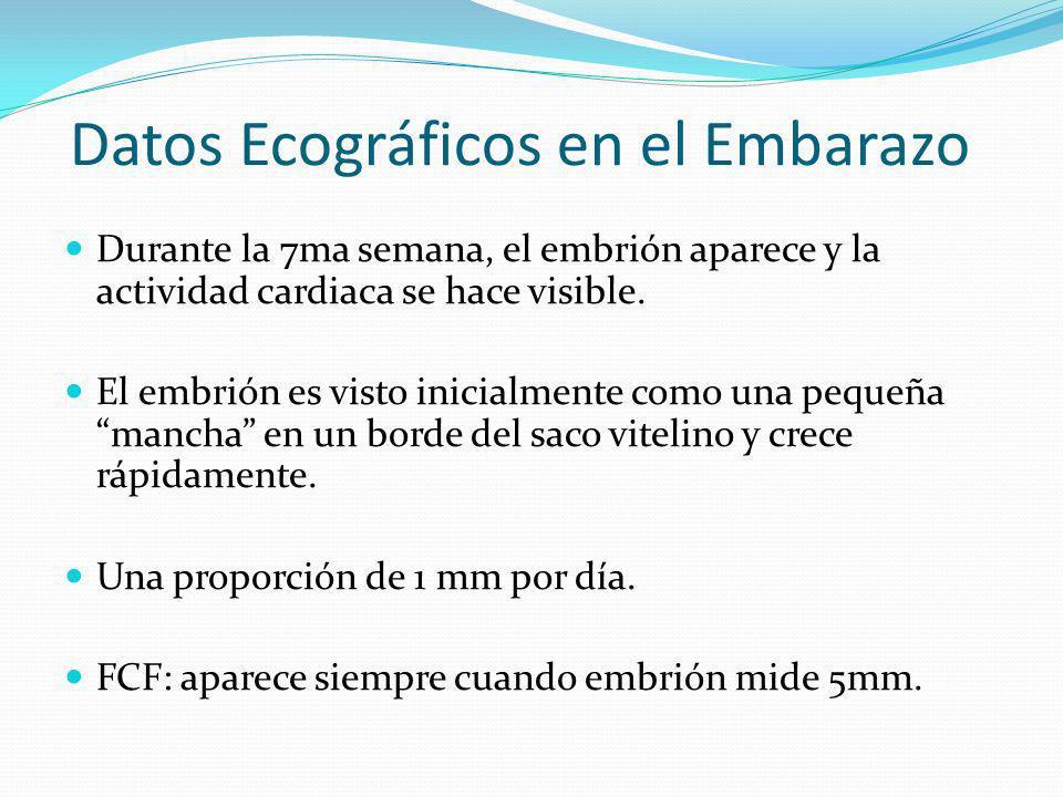 Datos Ecográficos en el Embarazo
