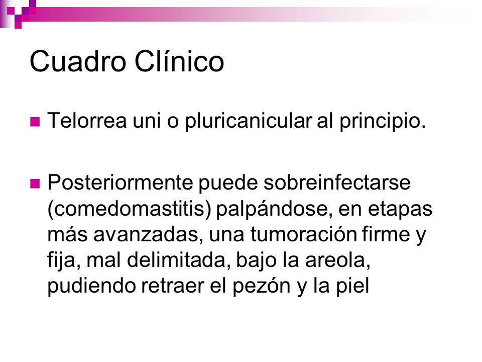 Cuadro Clínico Telorrea uni o pluricanicular al principio.