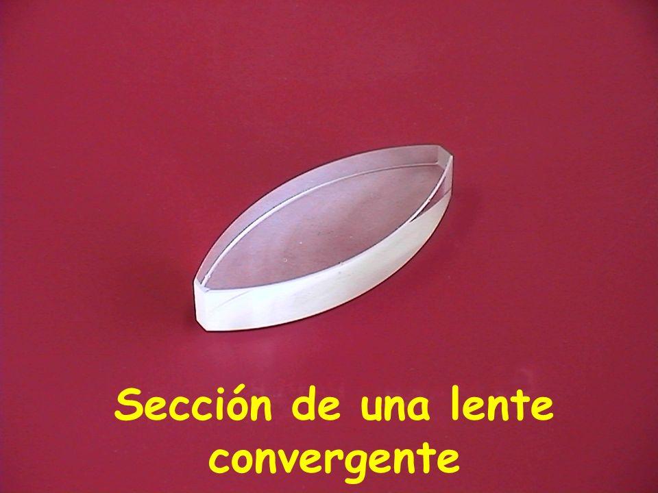 Sección de una lente convergente
