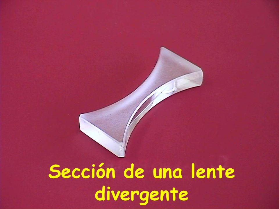Sección de una lente divergente