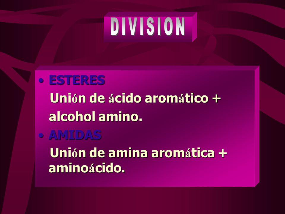 DIVISION ESTERES Unión de ácido aromático + alcohol amino. AMIDAS