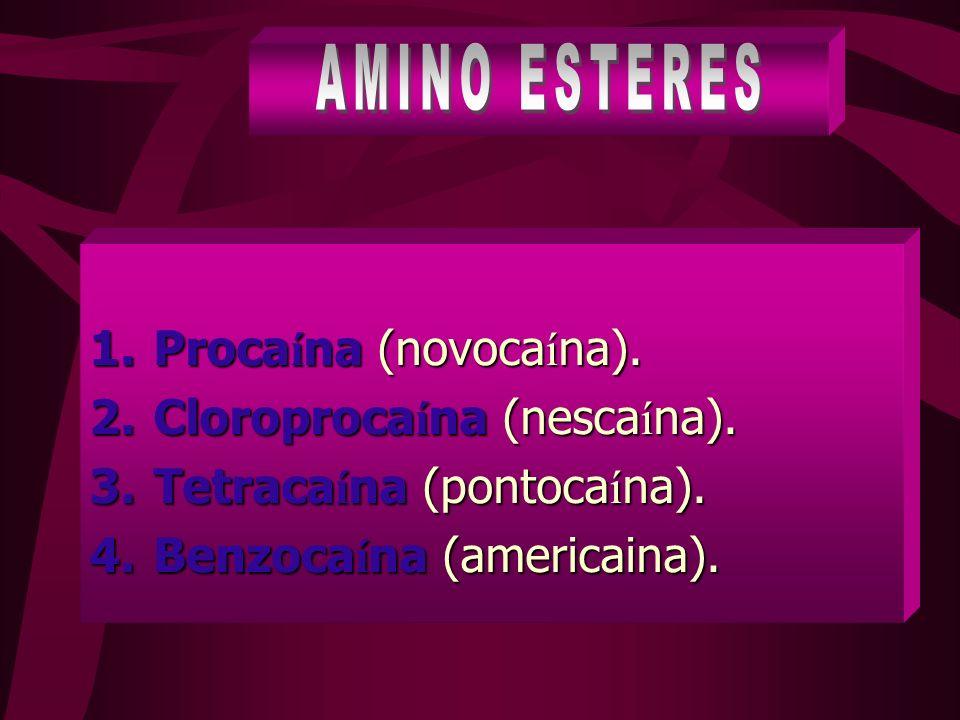 AMINO ESTERES Procaína (novocaína). Cloroprocaína (nescaína).