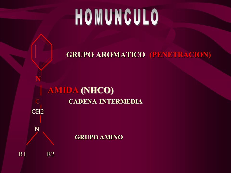 HOMUNCULO GRUPO AROMATICO (PENETRACION) N AMIDA (NHCO)