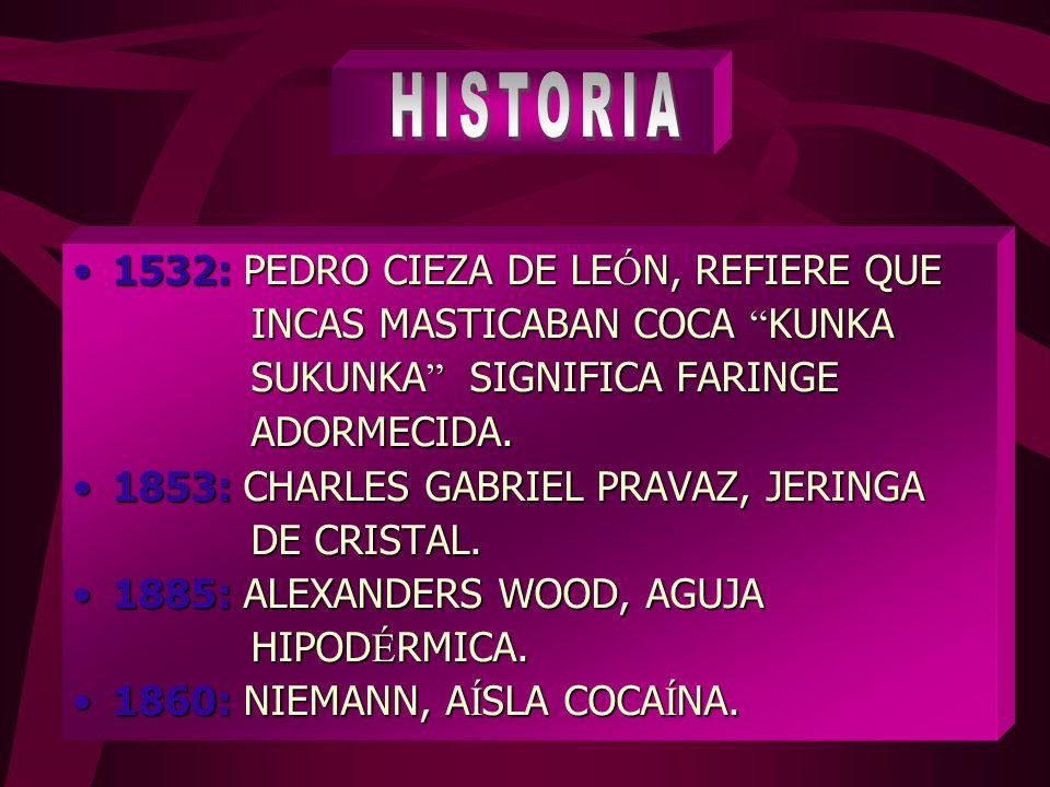 HISTORIA 1532: PEDRO CIEZA DE LEÓN, REFIERE QUE
