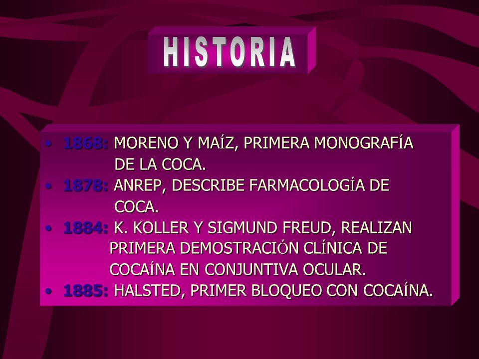 HISTORIA 1868: MORENO Y MAÍZ, PRIMERA MONOGRAFÍA DE LA COCA.