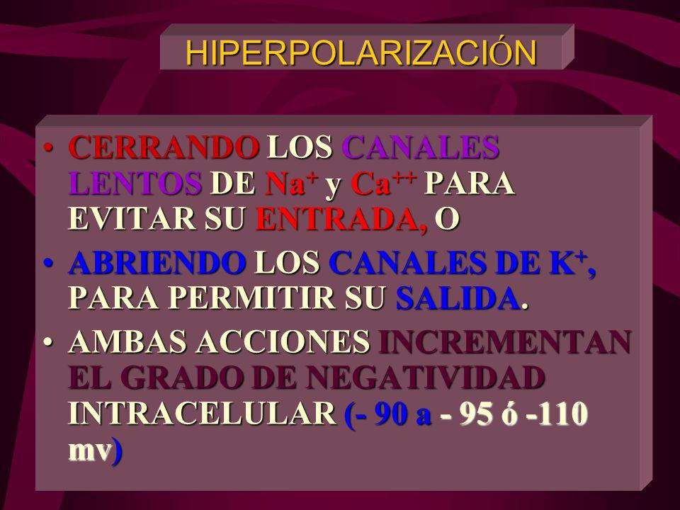 HIPERPOLARIZACIÓN CERRANDO LOS CANALES LENTOS DE Na+ y Ca++ PARA EVITAR SU ENTRADA, O. ABRIENDO LOS CANALES DE K+, PARA PERMITIR SU SALIDA.