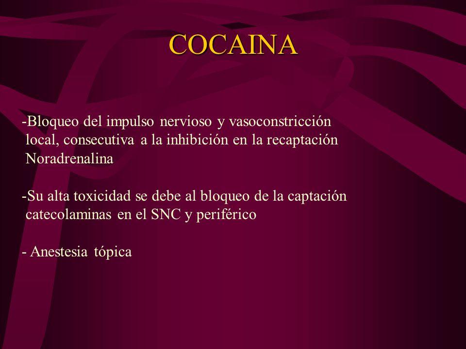 COCAINA Bloqueo del impulso nervioso y vasoconstricción