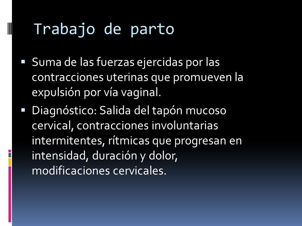 Trabajo de parto Suma de las fuerzas ejercidas por las contracciones uterinas que promueven la expulsión por vía vaginal.