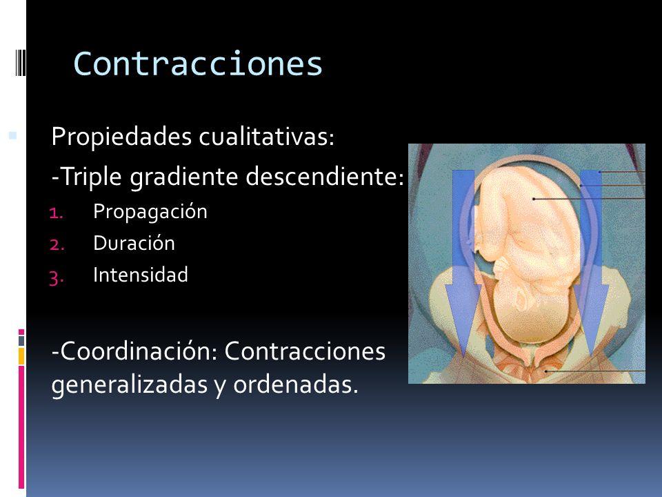 Contracciones Propiedades cualitativas: