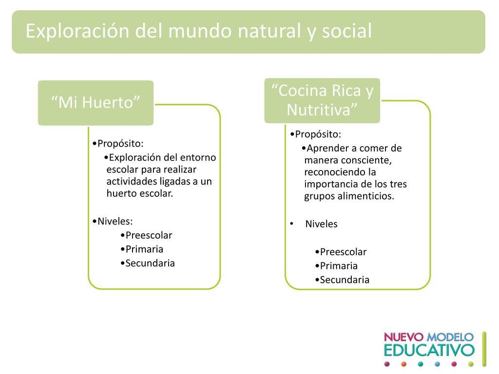 Cocina Rica y Nutritiva