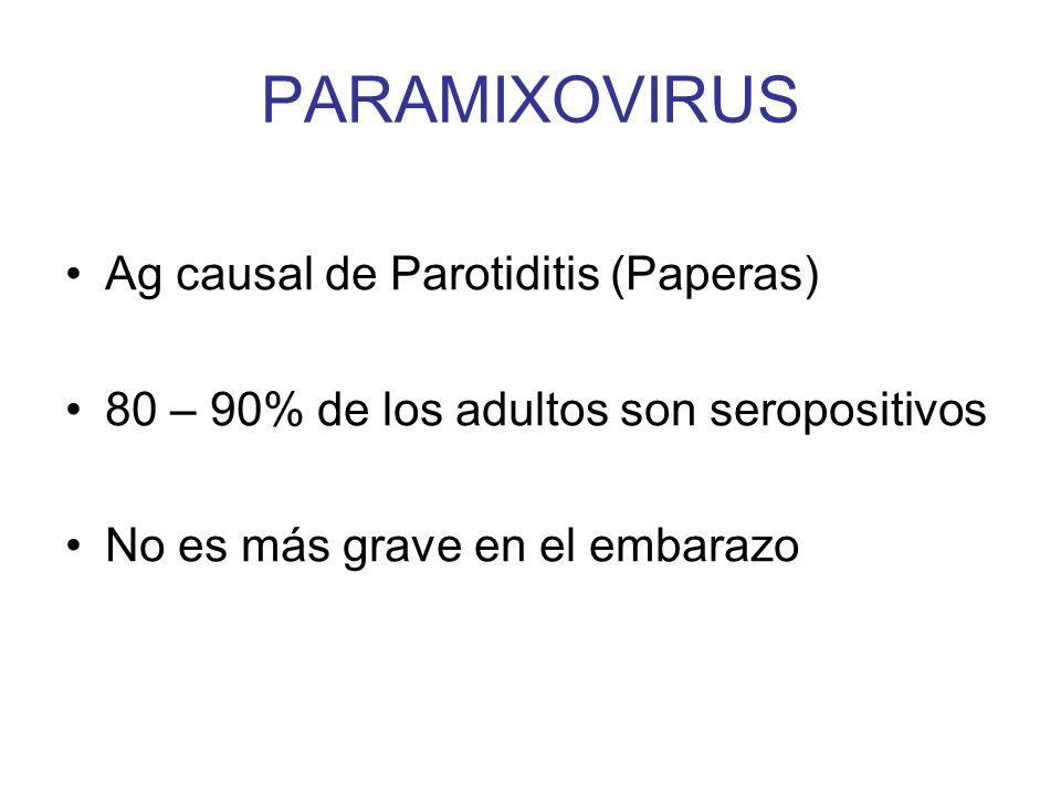 PARAMIXOVIRUS Ag causal de Parotiditis (Paperas)
