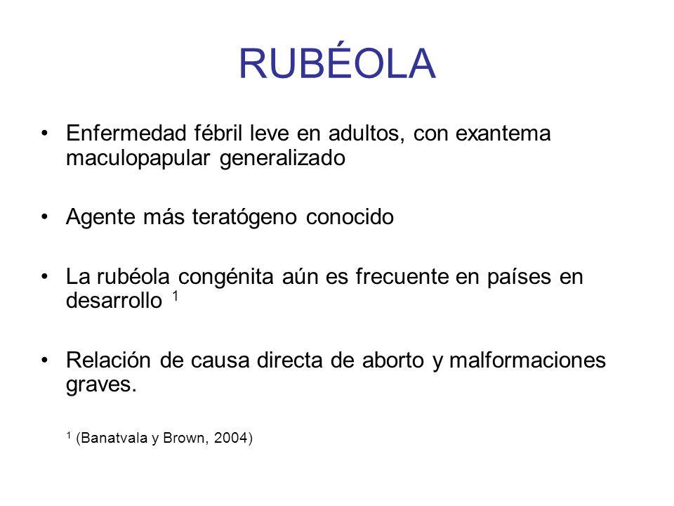 RUBÉOLAEnfermedad fébril leve en adultos, con exantema maculopapular generalizado. Agente más teratógeno conocido.