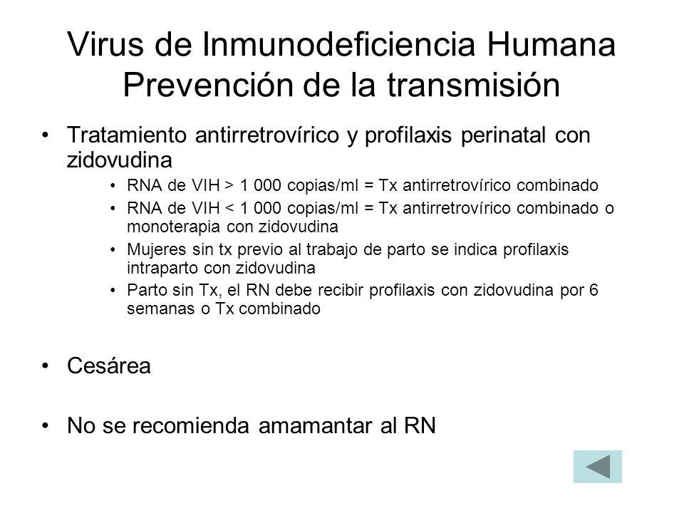 Virus de Inmunodeficiencia Humana Prevención de la transmisión
